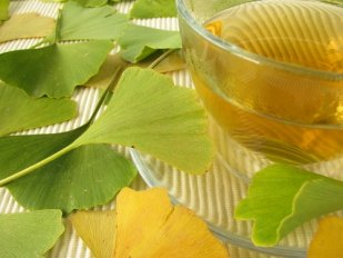 ginkgo thee